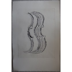 ARMAN - Original etching : Violoin profile