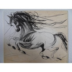 Jean-Marie GUINY - Signed etching : Running horse