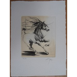 Jean-Marie GUINY - Signed etching : Training horse
