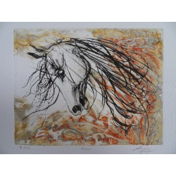 Jean-Marie GUINY - Signed etching : The horse Tama