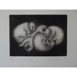 Gilbert POILLERAT - Signed etching : Group of 4 baby cats