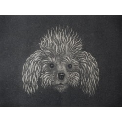 Gilbert POILLERAT - Signed etching : A poodle